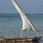 De boten van de vissers