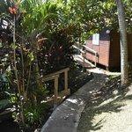 bungalow caraibes et alizé