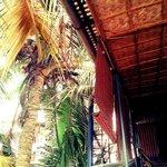 Balcony Uptairs