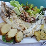 Duur visje van 83€ voor 2  aan de haven