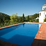 Beautiful large pool overlooking mountains covered with olive groves