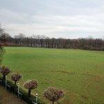 Naturschutzgebiet Riddagshausen