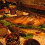 Carp fish Shkodra Lake