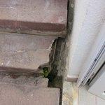 Dangerous bottom step