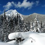 Beautiful winter scenery as seen on your snowmobile tour