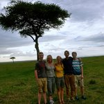 safari - they arranged it all
