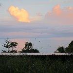 La vista desde nuestro bungalow
