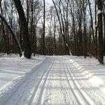 Sukkerbush ski trail