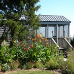 Our waterfront cabins have private porches surrounded by butterfly gardens.