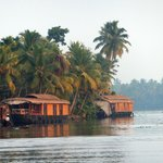 Some houseboats on the backwaters