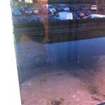 1st room offered - Dirty pool of water outside window on flat roof