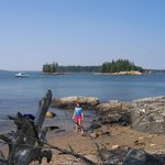 Maine Coast Island from Lobster Picnic