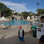 Nice big pool with cascade