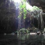 Cenote abierto. Cuando entra el sol es espectacular