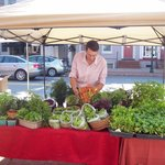 One of our local produce providers at the farmers' market!