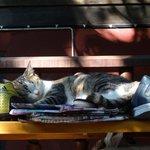 Ruhe und Entspannung sind garantiert