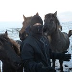 Our son with the Icelandic Horse