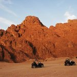 Sinai Excursions - Day Tours