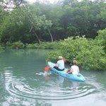 Kayaking in Unspoiled Mangroves
