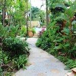 Samui Tropical Resort Foto