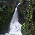 Cascade de San Gerardo de Dota
