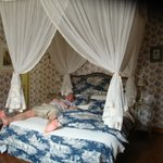 Bojacasse Room