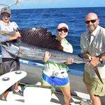 sailfish on caribsea