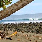 Surfen - ein bisschen was geht immer :)