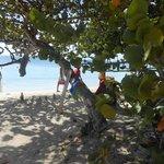 la plage de Pointe Marin