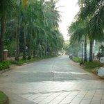 Дорога к Park Hayat