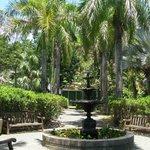 J.R. O'Neal Botanical Garden - BVI National Parks