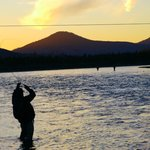 Fish on!  Make your reservations soon at Gwin's Lodge!