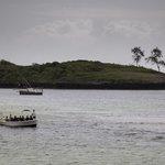 Turtle Bay, Watamu