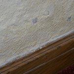 Damp plaster