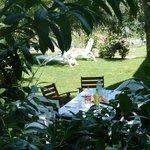 jardin exterior cabaña calfuman