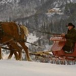 Fun sleigh rides followed by a festive dinner in the club house
