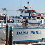 Dana Pride