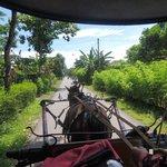 Fetching us at Manohara Hotel by horse cart