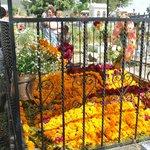 Cemetery during Dia de los Muertos