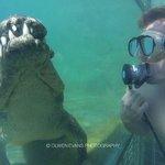 Scubaduiken & snorkelen