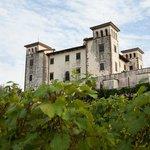 The Dobrovo Castle