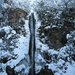 Dog Stream Waterfall In Winter