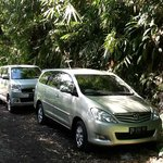 Your Bali Driver (Putu Sudiana) - Day Tours