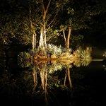 floodlit pond Sigiriya