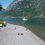 beach/lake