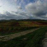 Panorama da una strada iterna adiacente al Relais