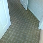 Rug into master suite