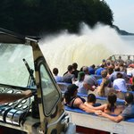 Wildthing Jet Boat Power Stops