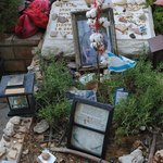 Michael Levine's grave (Photo by Talia Haykin)
