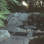 Waterfall/Lagoon
